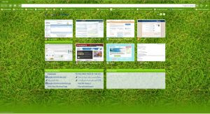 google chrome screenshot v3